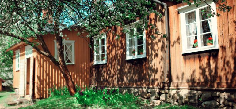 Kirsti Museum and apple tree flowers